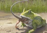史前青蛙真能吃掉恐龙吗?那得有多大多凶!