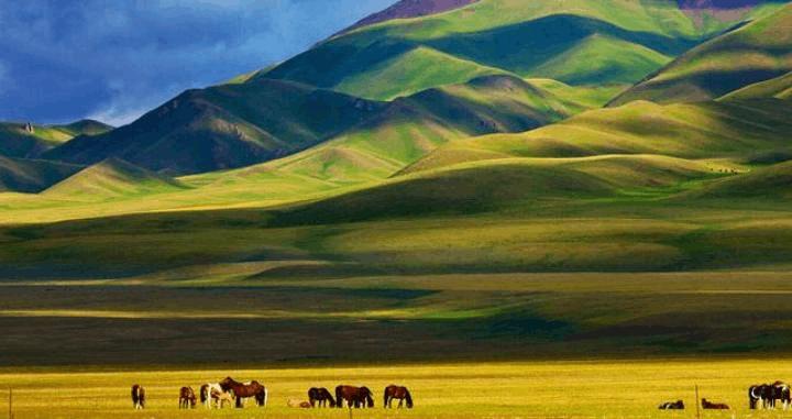 新疆旅游有多热?酒店都预定到10月份了!