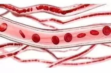 最伤血管的3件事 你可能天天都在做