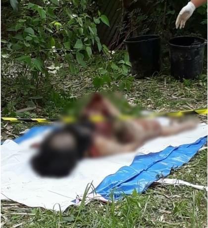 荒唐!泰国杀人女凶犯因外貌姣好走红 受多人追捧