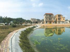 阳东区78条自然村村民共建共管争创特色示范村