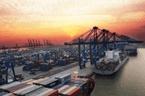 """重庆自贸试验区迎""""半年考"""" :投资总额超2000亿元"""