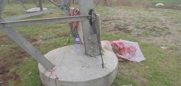 男子当街屠牛卖肉 铁榔头锤头场面血腥