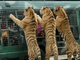 潮州和揭阳都要建野生动物园,两园相距仅38公里