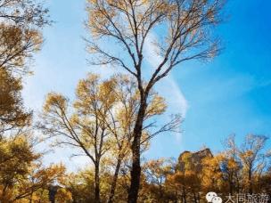据说大同的这些地方秋季美的如梦如幻