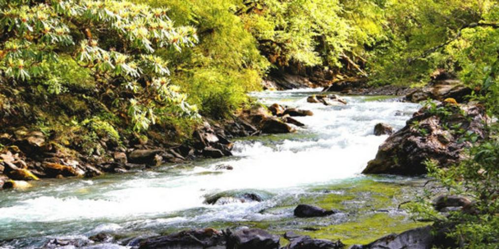 绵阳保障饮用水水源地环境安全 让群众喝上放心水