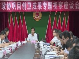 阳江市政协专题视察巩固创卫成果工作