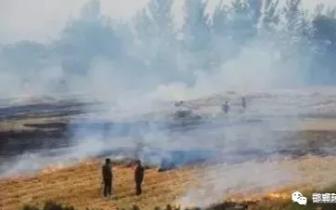 注意!肥乡区4人因焚烧秸秆被拘
