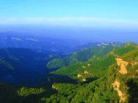 5月19日中国旅游日 人祖山门票半价优惠