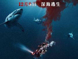 电影《鲨海》今日全国上映 肉搏嗜血鲨鱼原片片段曝光