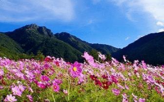 领略台湾九寨沟、雾上桃源、台湾小瑞士
