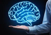 3D打印技术首次造出类脑组织,做完整大脑将有戏