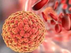 研究分析称:巴西黄热病毒变异疫苗依然有效