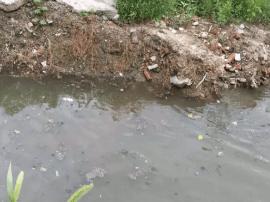 市创建办曝光市区部分河道水体污染 居民备受影响