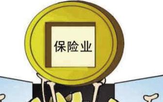 """监管敲山震虎 保险业拒绝股权""""不清不楚"""""""