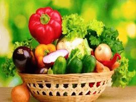 广西力推冷链建设合作 每天都能吃到各地新鲜蔬菜