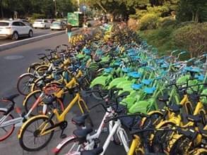 上海暂停新增投放共享单车,杭州停不停?