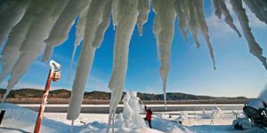 图说龙江:神州北极冰雪情