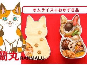 猫奴便当:猫猫这么可爱,怎么可以吃!