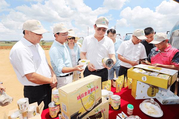 郑人豪:规划建设好广东滨海旅游公路 打造全域旅游精品