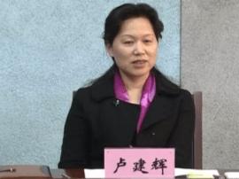 大渡口书记卢建辉:维护党中央权威和集中统一领导