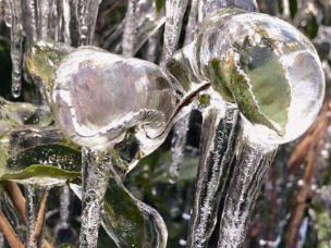 福建军营村刷新低温记录 形成壮观冰凌