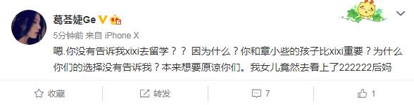 汪峰前妻不知女儿将留学:你们的孩子比xixi重要?