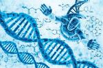 有乳腺癌家庭史的人群检测是否有基因突变