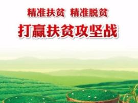 卢氏林业局:开展扶贫政策宣讲 凝聚林业攻坚力量