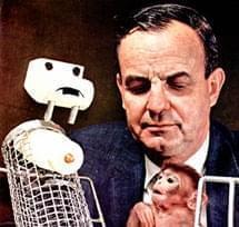 可恶而发人深省的实验:没妈的猴会选食物还是怀抱