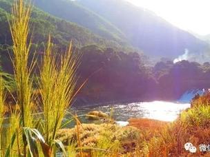 人工湖也可以很美!秋天的汤溪水库又美颜了