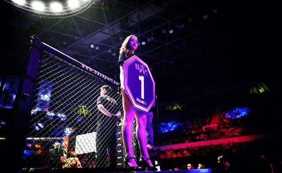 功夫革命!综合格斗MMA成为流行文化的N种可能