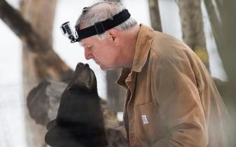 美生物学家称黑熊与人类基因相似度极高