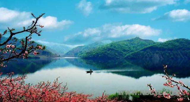 """""""中国最美""""凤上线已免费开通 去赏花看这里!"""