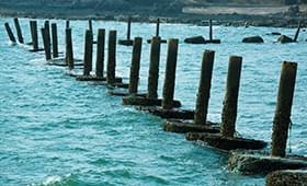 《青岛印象》第31期:风从海面吹过来