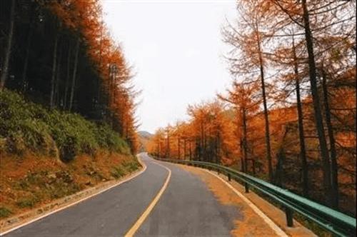 重庆超级美的十条公路等你去邂逅