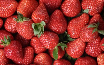 草莓最脏 咖啡致癌 这些事儿你也敢信?