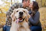 更倾向于健身 做单身狗不为人知的益处