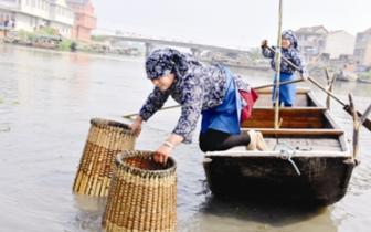 """""""全国最美渔村"""":古法捕钓""""十八帮""""重现江湖展绝活"""