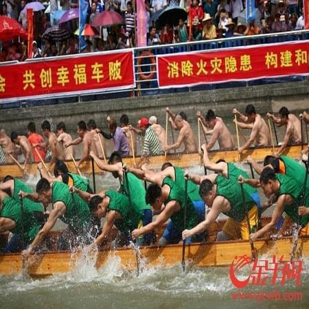 广州今起有龙舟赛 周五车陂龙舟赛打响头炮