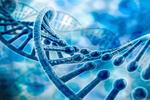 """基因检测""""算出""""孩子未来?"""
