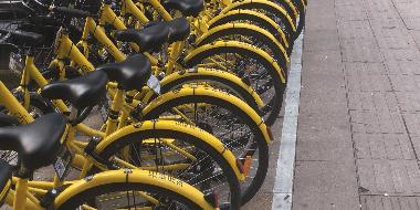 石市街头现数百辆小黄车无人骑 资源共享还