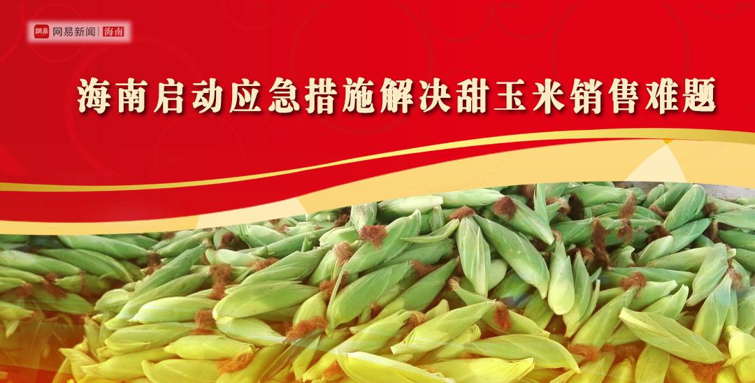 海南启动应急措施解决甜玉米销售难题