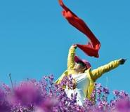 近万外地游客赴扎兰屯欣赏4月杜鹃花海