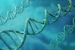 这九种病需注意 母亲可能会遗传给女儿