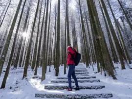 涪陵武陵山冬季雪景不输北国风光