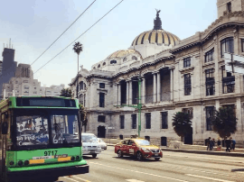 墨西哥最可爱之处,可不只有骷髅头。