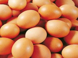 石家庄阴雨天带起蔬菜、鸡蛋价格小涨