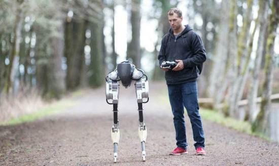 机器人进化论:新的感官能力触发寒武纪大爆发
