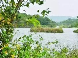 南宁尚未开发的处女地 青秀区的大龙湖 约吗!